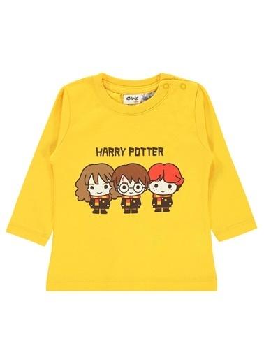 Harry Potter Sweatshirt Hardal